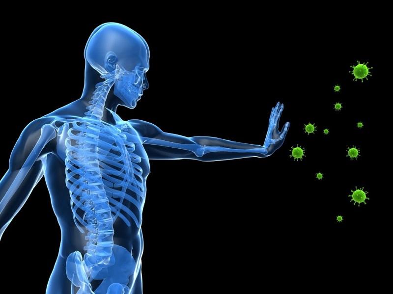 Immune Defenses